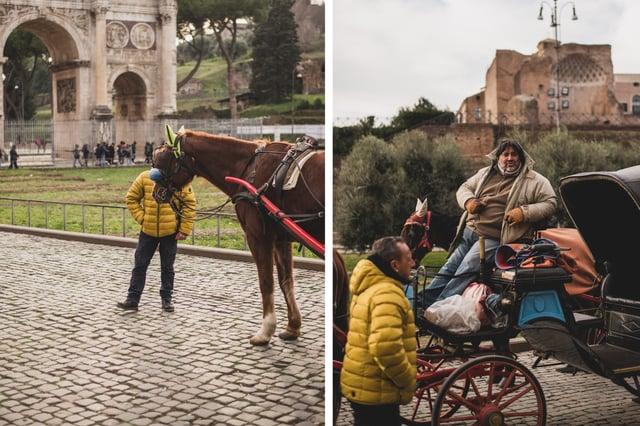 Horses Around Rome