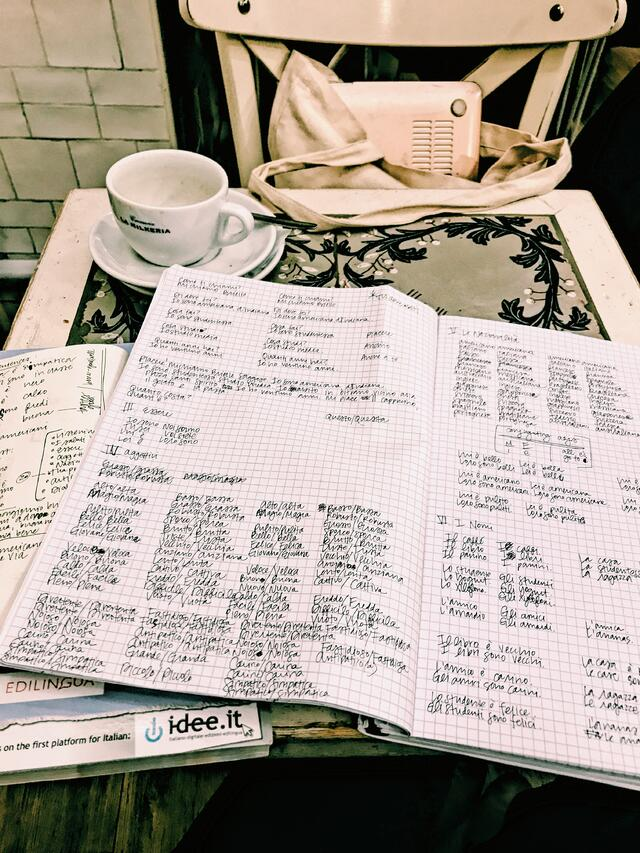 Language Lesson Notes