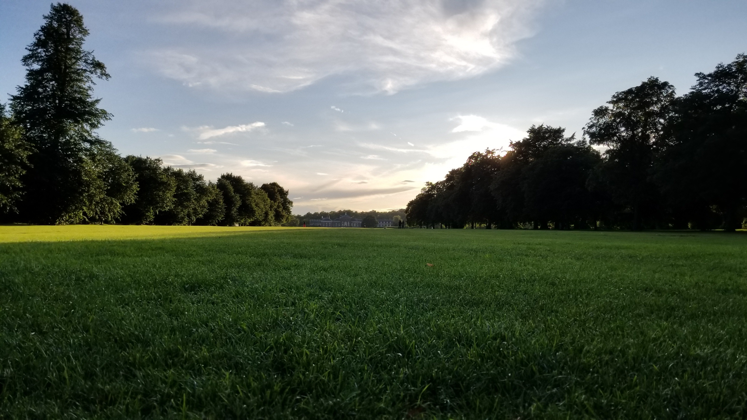 CAPAStudyAbroad_London_Fall2017_From Thaddeus Kaszuba - Field in Hyde Park.jpg