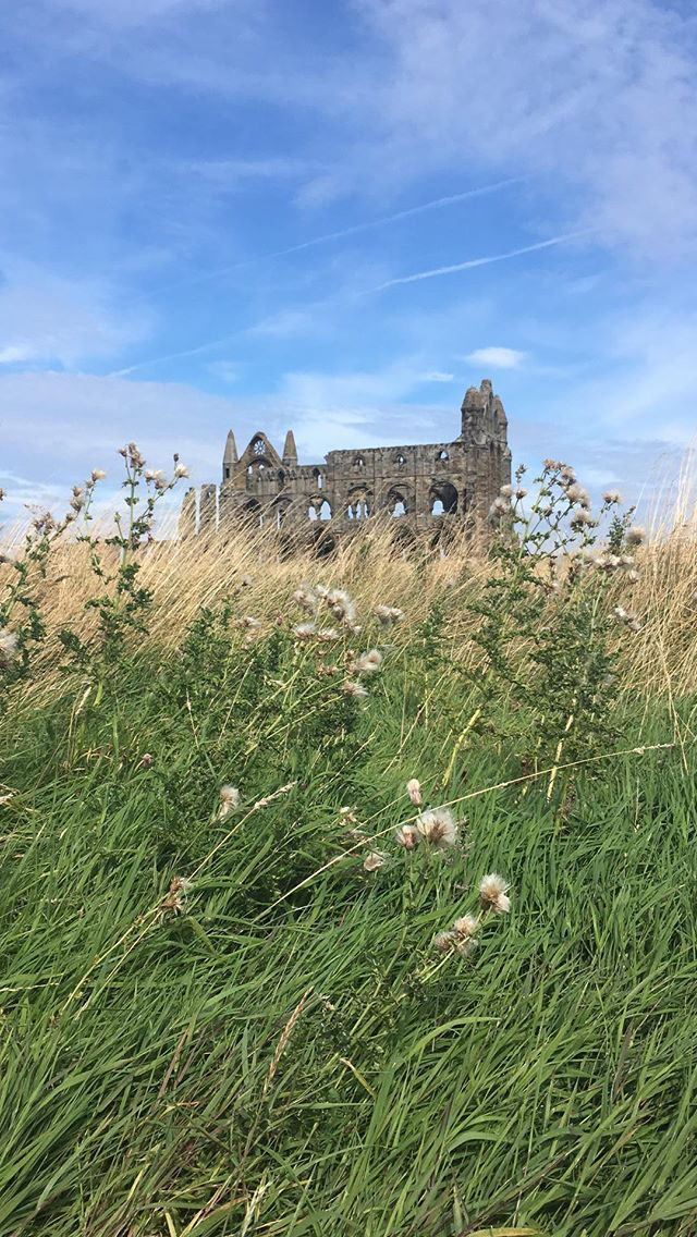Whitby Abbey from a Distance