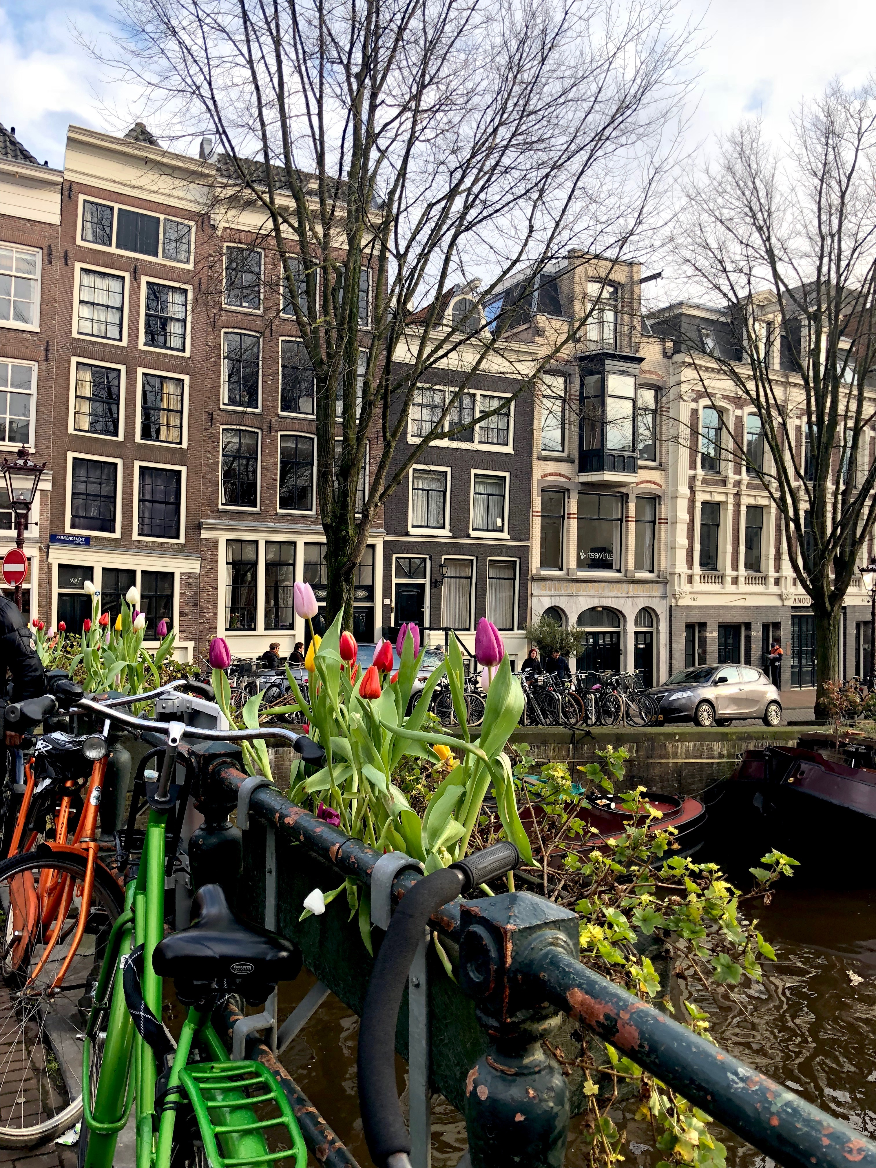 CAPAStudyAbroad_London_Spring2018_From Kelly Allen - Traveling in Amsterdam, Netherlands