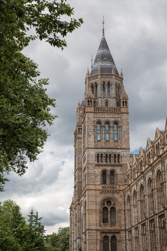 London_Natural_History_Museum_by_Stephanie_Sadler_Little_Observationist