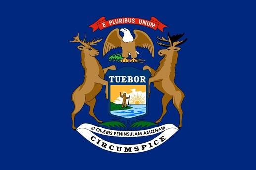 CAPAStudyAbroad_Summer2021_Dublin_Alyeea Turner_Michigan Flag