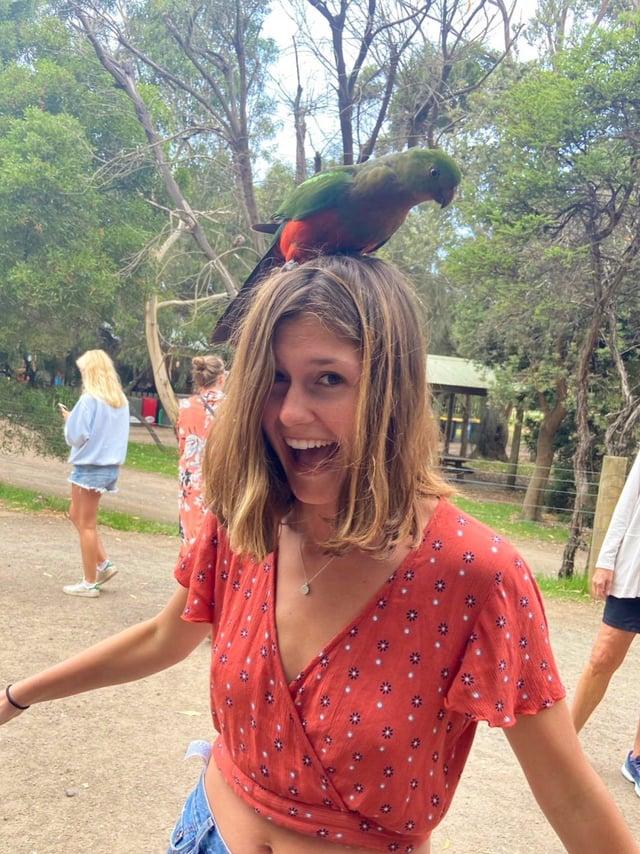 CAPAStudyAbroad_Sydney_Spring 2020_Emma Estabrook_Bird