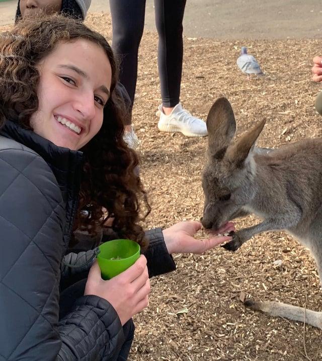 CAPAStudyAbroad_Spring2020_Sara Shriber_Kangaroo