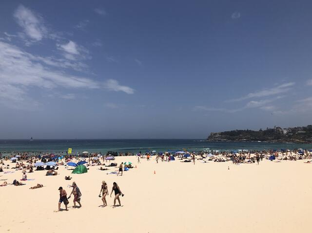 Why Study Abroad in Sydney - Photo 5 - Updated