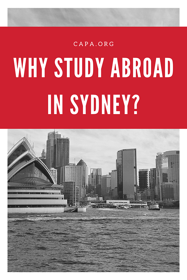 Why Study Abroad in Sydney - Pinterest Graphic