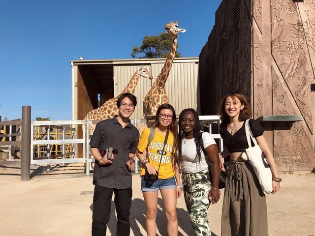 Maria and Friends at Taronga Zoo