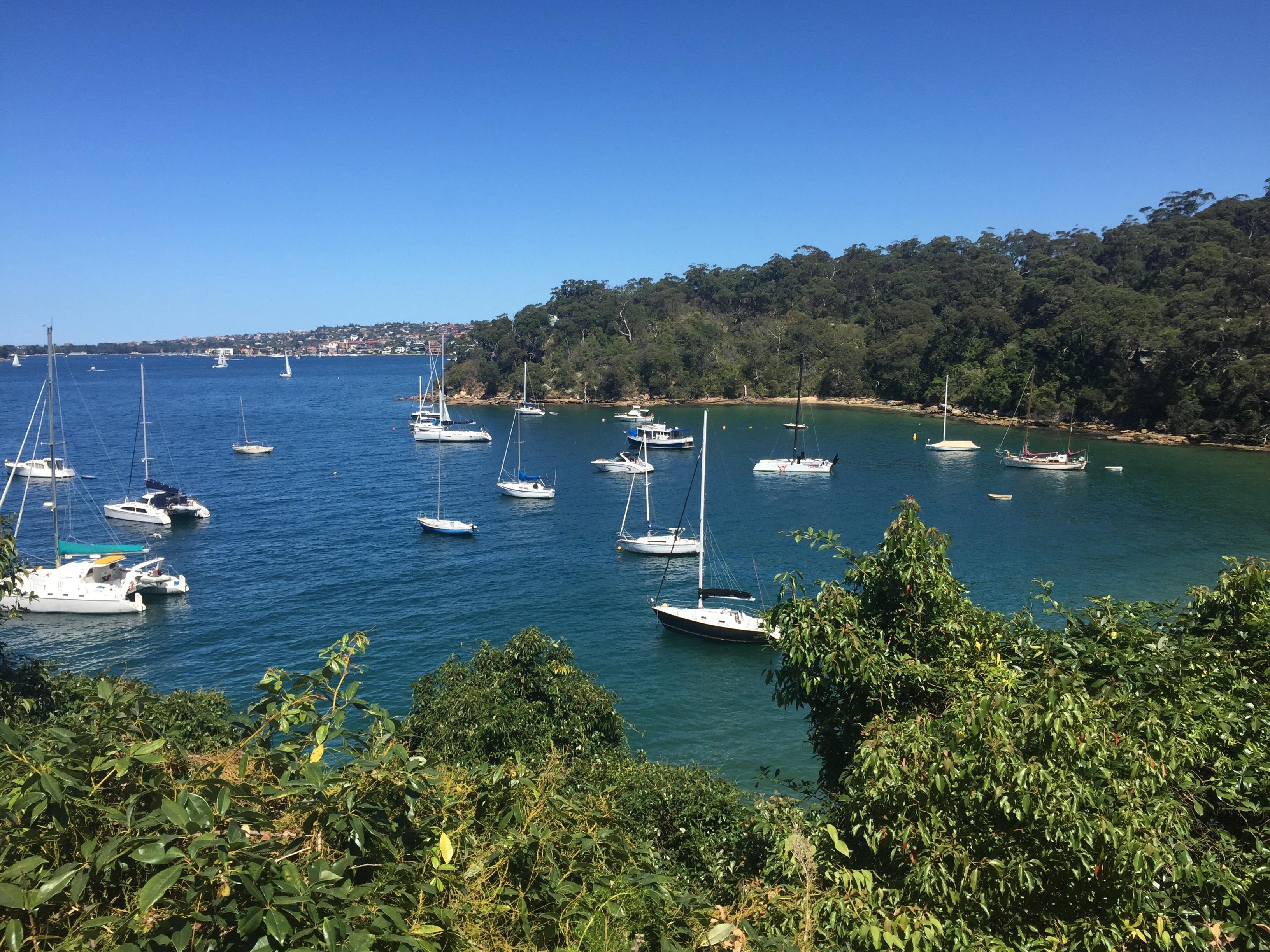 CAPAStudyAbroad_Sydney_Fall2017_From Hanna Okhrimchuk - Balmoral Beach Walk_2.jpg