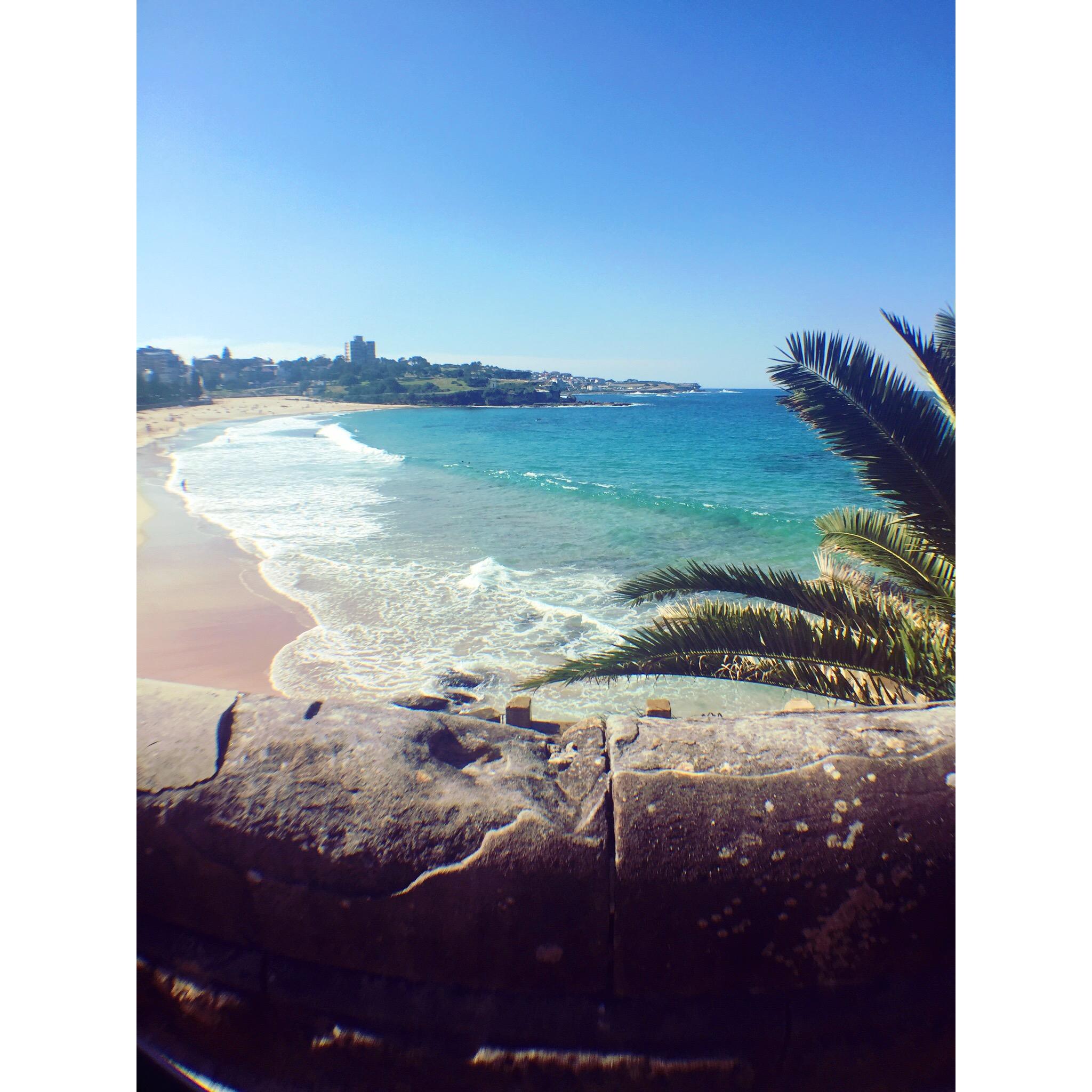 CAPAStudyAbroad_Sydney_Fall2017_From Hanna Okhrimchuk - Coogee.jpg