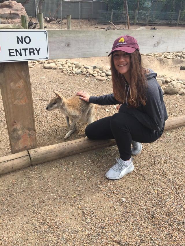 CAPAStudyAbroad_Sydney_Fall2017_From Hanna Okhrimchuk - Kangaroo at Featherdale Wildlife Park.jpg