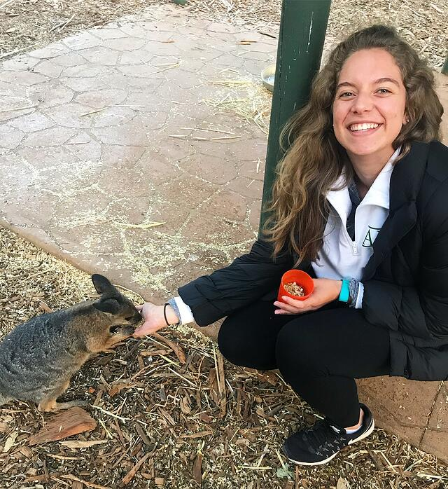 Feeding a Kangaroo at Taronga Zoo
