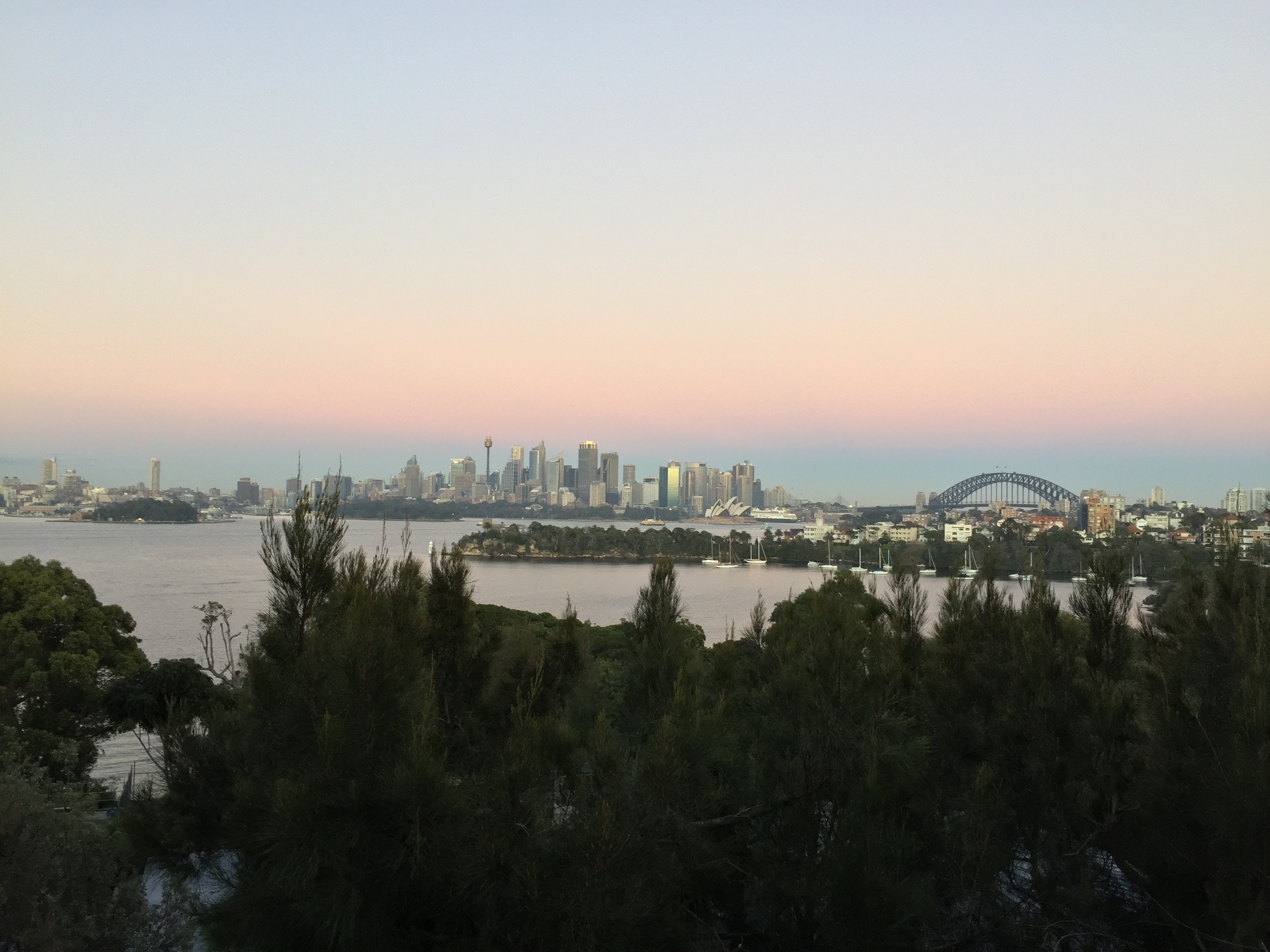 Taronga Zoo with a View