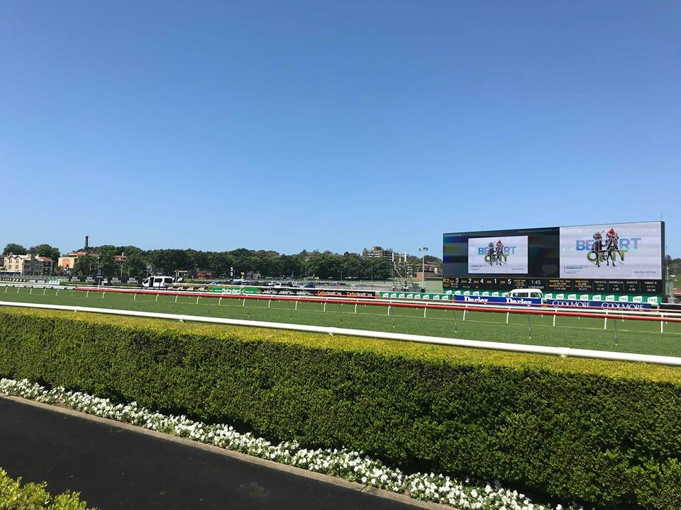 Front Row at the Royal Randwick Racecourse
