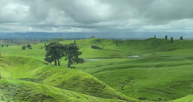 CAPAStudyAbroad_Fall 2019_Sydney_Minh Ta_Auckland to Hobbiton