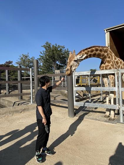 Minh Ta Alumni Blog 1 - Giraffe!