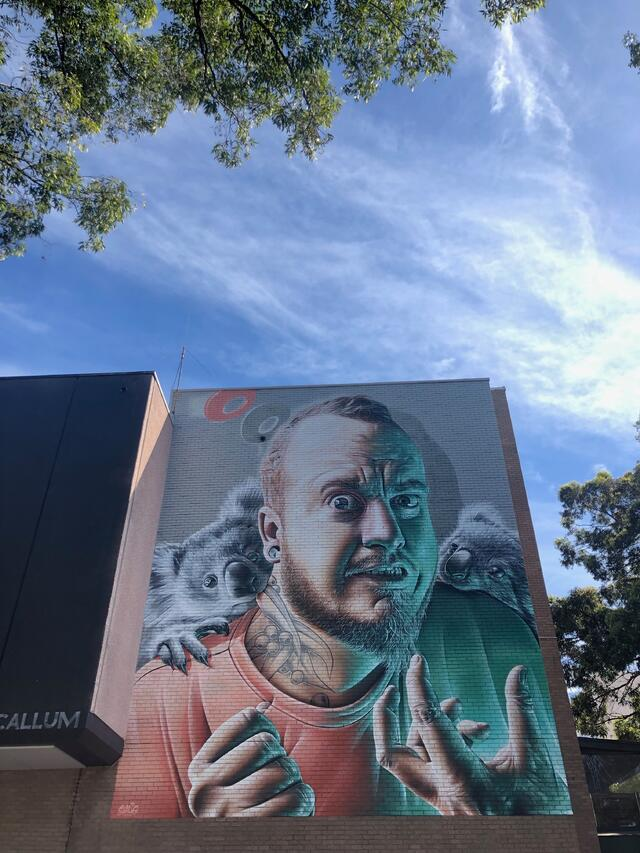 Wollongong Art