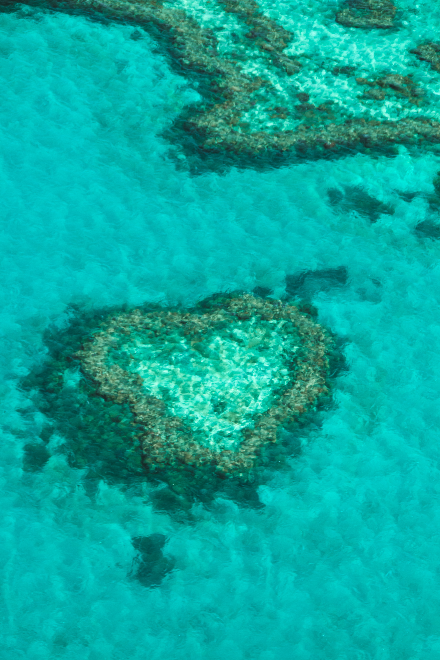 Heart Reef, one of Australia's most beloved yet fragile natural wonders