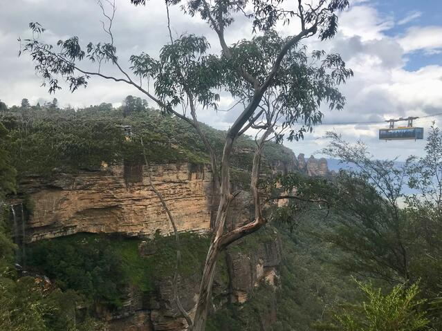 A Scenic World indeed
