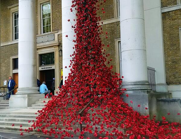 CAPAStudyAbroad_Fall 2018_London_Dr Michael Woolf_Poppies Display at the Imperial War Museum-156108-edited