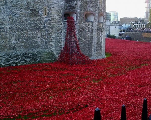 CAPAStudyAbroad_Fall2018_London_Dr Michael Woolf_Poppies Display at the tower of London for Armistace day-047804-edited