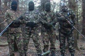 Provisional IRA Paramilitary Group
