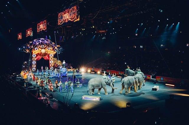 circus-828680_640.jpg