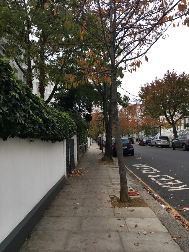 A peaceful side street somewhere in Kensington and Chelsea