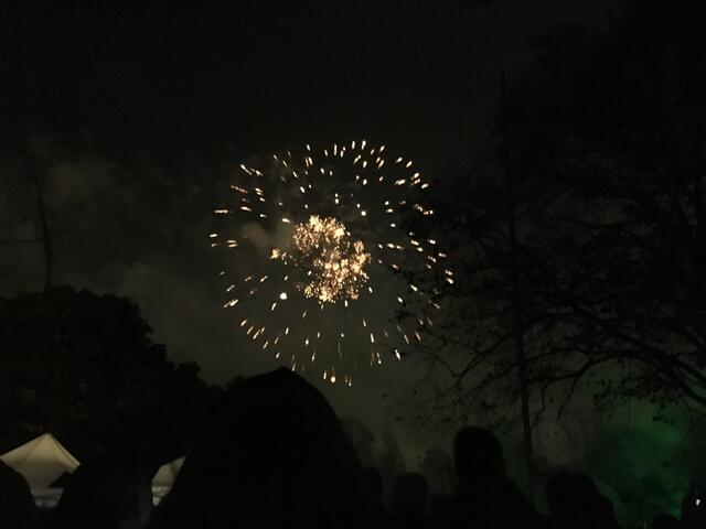 Fireworks; The fireworks filled the sky with glittery sparks