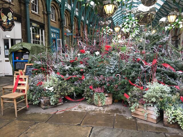 The flowers change with the seasons at Covent Gardens