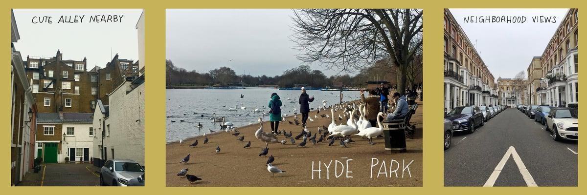 Hyde Park and Neighborhoods