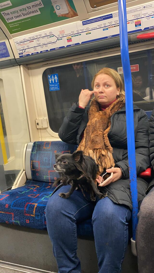CAPAStudyAbroad_Spring2020_London_JamesNightengale_Woman and Dog on Tube